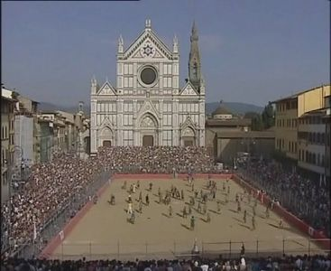 Florence7-550