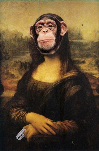 5. Monkey Lisa
