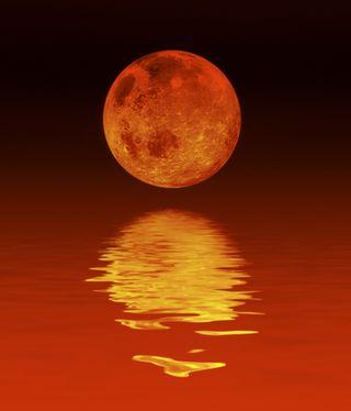 Luna rossa blog