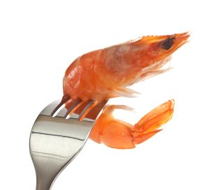 Blog shrimp