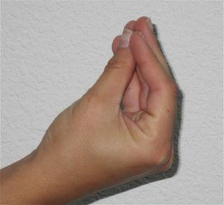 Blog finger purse
